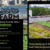Ένα φυτεμένο δώμα στο πλαίσιο της βιοκλιματικής αρχιτεκτονικής στο Μπρούκλιν