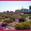 Άντριου Κλέμεντς:  βιοκλιματική αρχιτεκτονική και Οικοστέγες στην Ελλάδα
