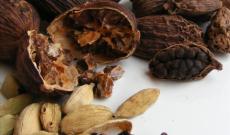 Το Κάρδαμο και το νεροκάρδαμο ως φαρμακευτικά βότανα
