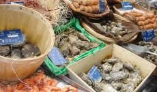 Ταξίδι στις ακτές της Νορμανδία και της Βρετάνης