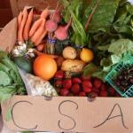 Αγορά προϊόντων χωρίς μεσάζοντες, φρούτα και λαχανικά εποχής