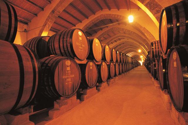 wine-tour-sicily-21