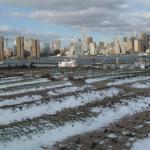 οικοστέγη «Eagle Street Rooftop Farm» με θέα το Μανχάταν